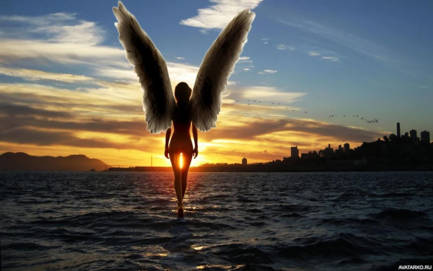 фото с крыльями за спиной энергии фотоэлектронов
